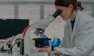 two female research scientists looking into microscope in a laboratory